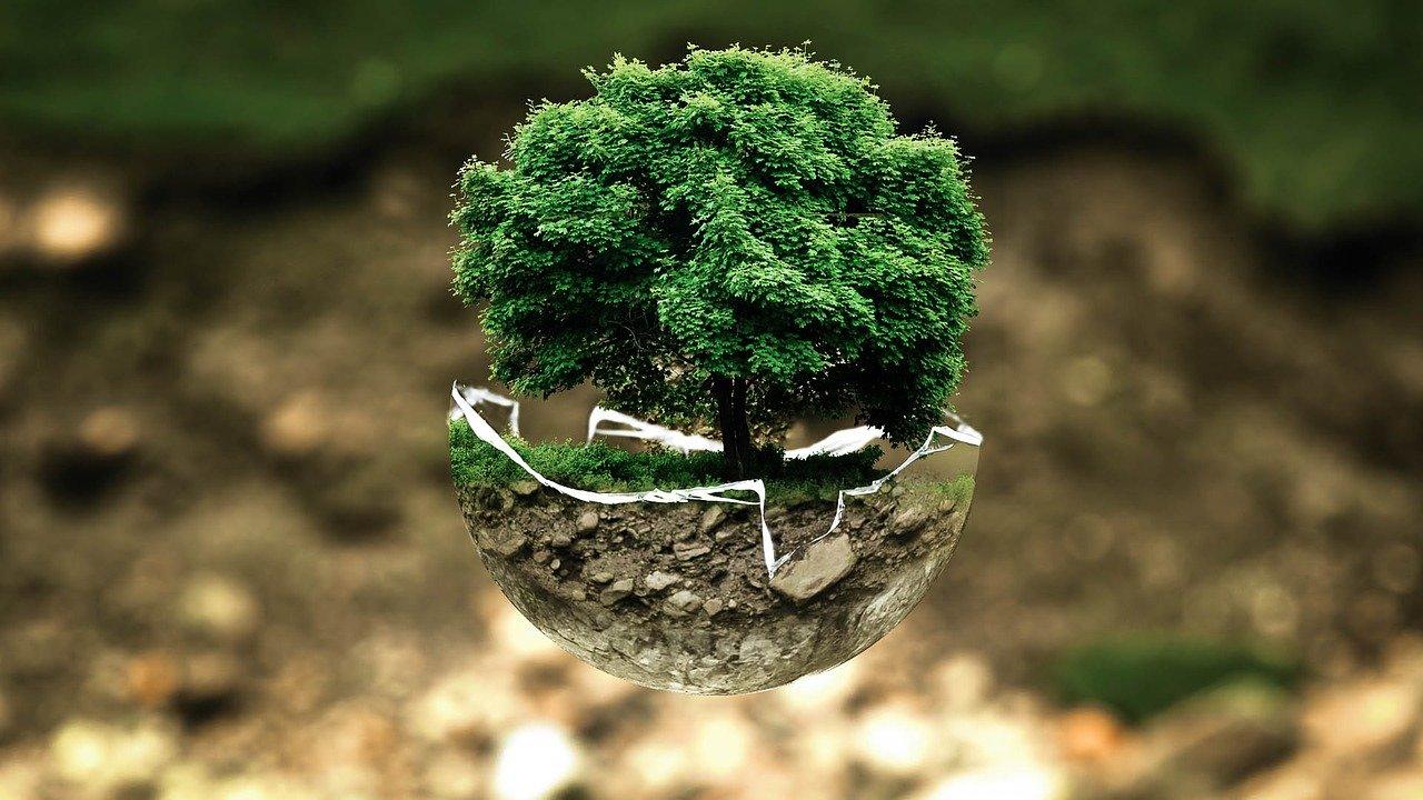 nachhaltig investieren mit ETFs und Fonds